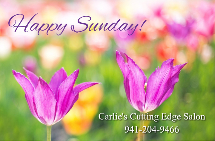 Happy sunday carlie 39 s cutting edge salon spa for A cutting edge salon